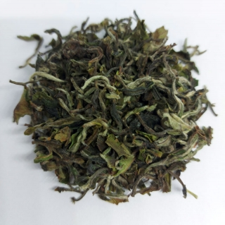 Darjeeling First Flush Rohini Kotidhara Moonlight 2021