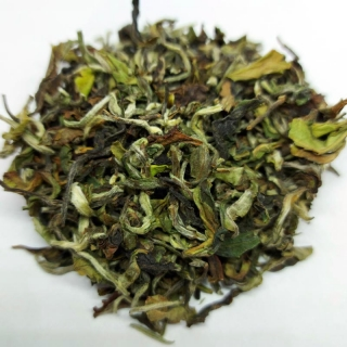 Darjeeling First Flush Rohini Moonlight Queen 2021